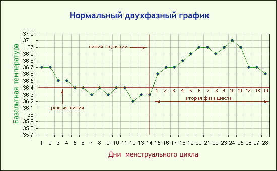 Базальная температура при наступившей беременности