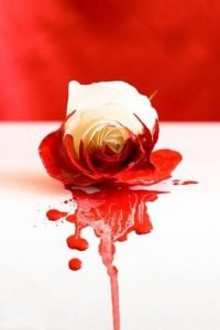 Причины влагалищных кровотечений